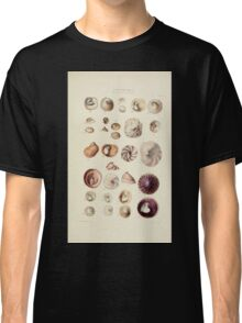 Thesaurus conchyliorum Monographs of genera of shells George Brettingham Sowerby 1887 V1-V5 218 Classic T-Shirt