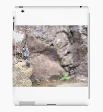 Small World 4 iPad Case/Skin