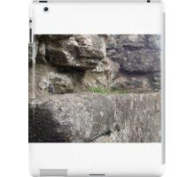 Small World 5 iPad Case/Skin