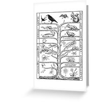 The Evolution of Things Greeting Card