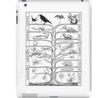 The Evolution of Things iPad Case/Skin