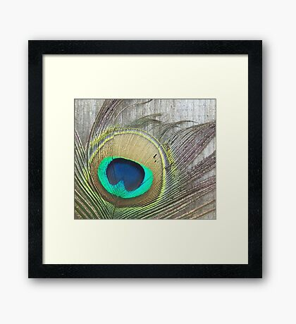 Vibrant Peacock Feather with Rustic Background Framed Print