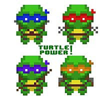 turtle power Photographic Print