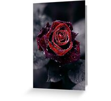 Luxury Greeting Card
