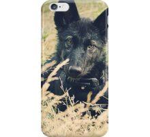 Mountain Man... Er... Pup iPhone Case/Skin