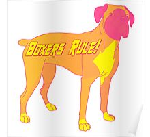 Boxers Rule Poster