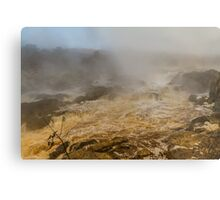 Falls of the Potomac in mist Metal Print