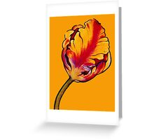 Parrot Tulip No.2 Greeting Card