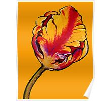 Parrot Tulip No.2 Poster