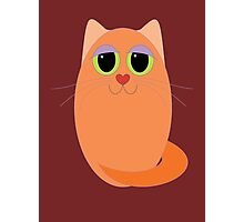 CAT MARMALADE ONE Photographic Print