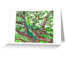 Angel Oak  Greeting Card