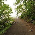 Walking Up Fuji Mnt by Christian Eccleston