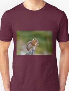Golden Mantled Ground Squirrel Sitting on a Rock Eating Unisex T-Shirt