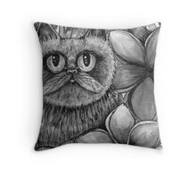 hay there big eyes Throw Pillow
