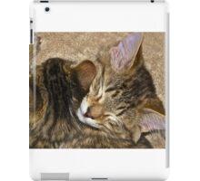 Sleepy Kittens iPad Case/Skin