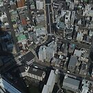 View Down From Skytree (Tokyo, Japan) by Christian Eccleston