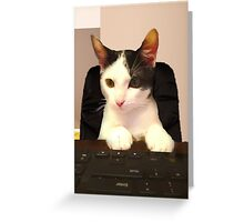 Photo Cute Cat Sitting at Keyboard  Greeting Card