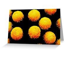 yellow globes on black Greeting Card