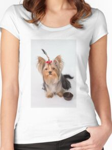 A charming puppy with her plate Women's Fitted Scoop T-Shirt