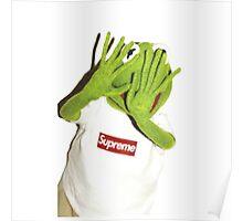 Kermit Photobomb Poster