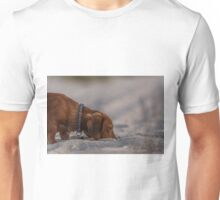 The nose knows - Alfie our Dachshund Unisex T-Shirt