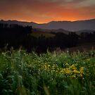 Sunset ii by BlaizerB