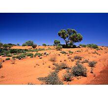 Desert1 Photographic Print