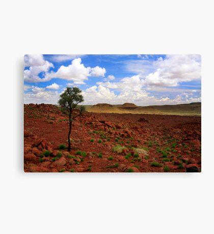 Desert3 Canvas Print