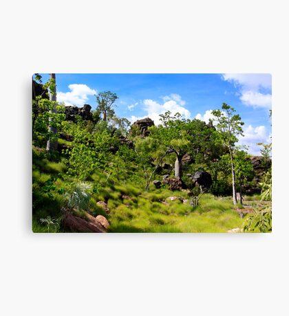 Kimberley1 Canvas Print