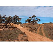 A Road Less Travelled Photographic Print