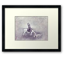 Indian Chief 7 Framed Print