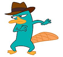 Perry  the Platypus Photographic Print