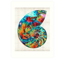 Colorful Nautilus Shell by Sharon Cummings Art Print