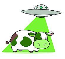 Cow Alien Abduction Photographic Print