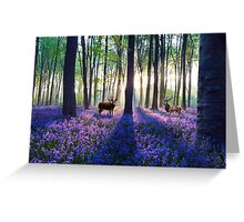 Forest of Deer and Bluebells Greeting Card