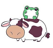 Frog Cow Photographic Print