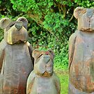 three bears in wood by Stephen Frost
