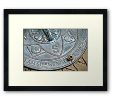 Bee on Sundial Framed Print