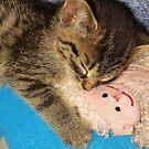 Sleepy Kitty by Grinch/R. Pross