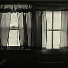 window in winter by lastgasp