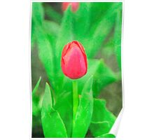 Red flower on green field Poster