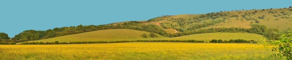 Panorama of South Downs, Sussex by Stephen Frost