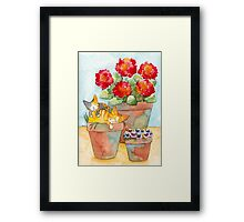 Sleeping Kittens and Geraniums Framed Print