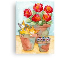 Sleeping Kittens and Geraniums Canvas Print
