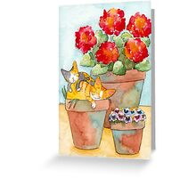 Sleeping Kittens and Geraniums Greeting Card