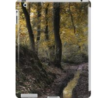 October Wood iPad Case/Skin