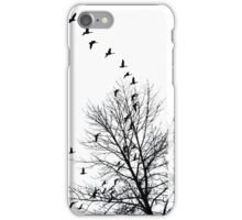 Bird Flight iPhone Case/Skin