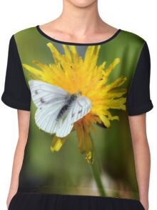 Green-veined White Butterfly Chiffon Top