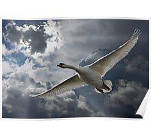 Wingspan Poster