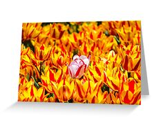 A Tulip Unto Itself Greeting Card